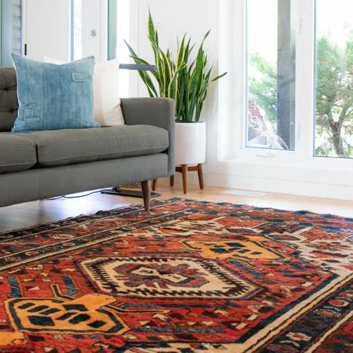 Persian Carpets and Area Rug in a family room